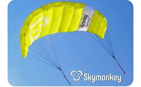 Kajt Airtwister Skymonkey